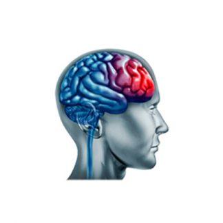 Улучшение работы мозга, увеличение работоспособности